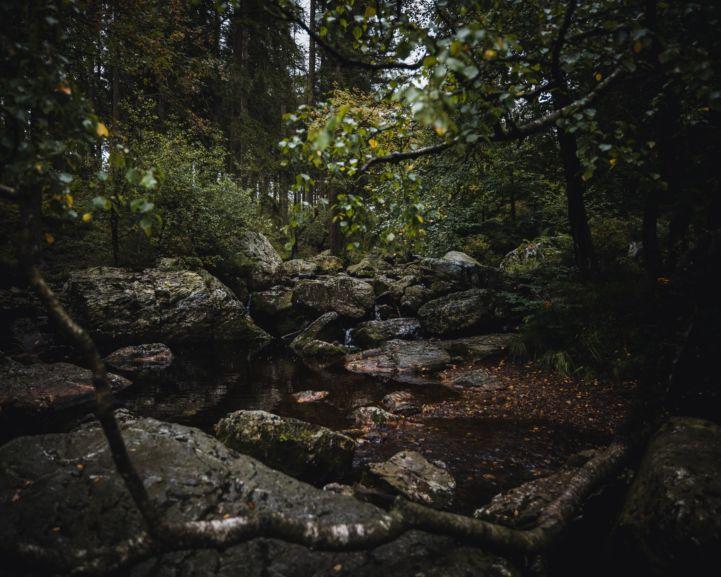 Ardennes Regional Nature Park