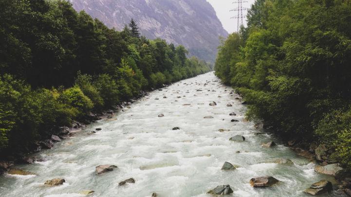 Rhine_13.jpg