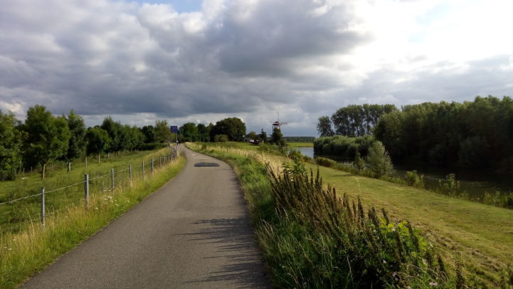 12_cycling_through_betuwe.jpg