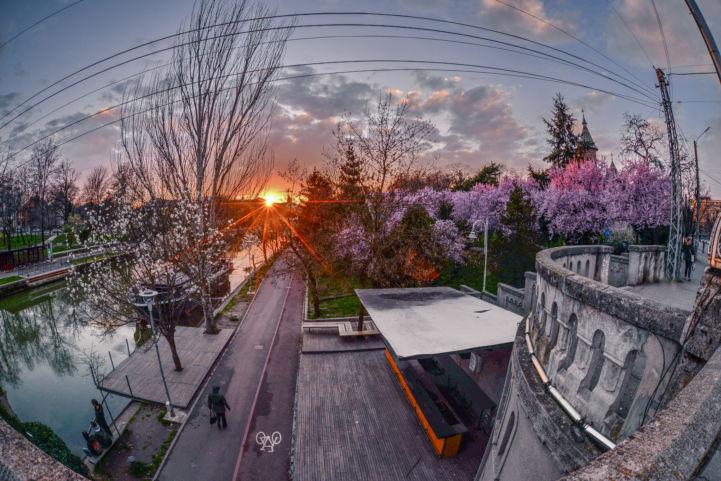 Bike lane at dusk