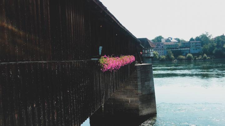 Rhine_30a.jpg